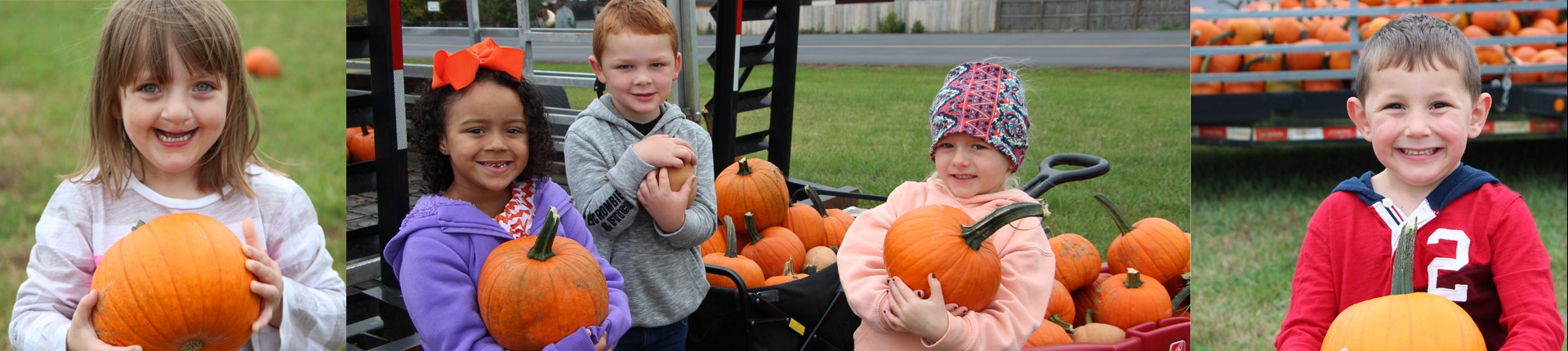 Preschoolers picking out their favorite pumpkins.