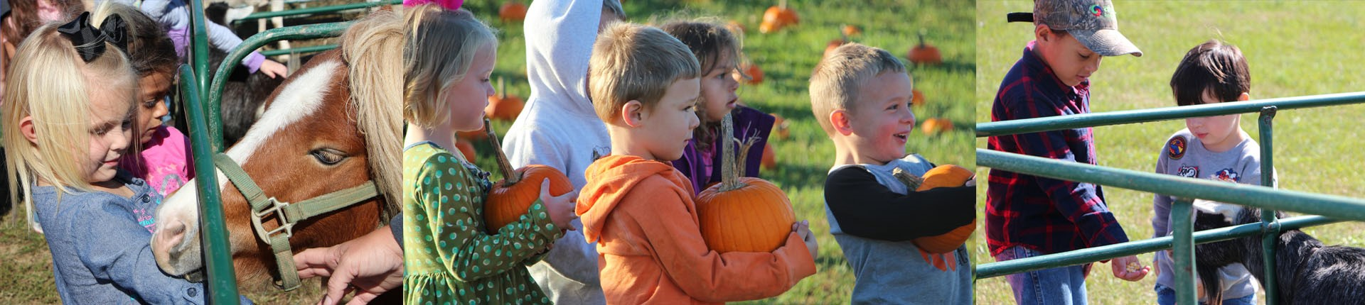 The Farm at Landworks brought pumpkins and a petting zoo for our preschoolers.  This was great way for our children to learn what grows and lives on a farm!
